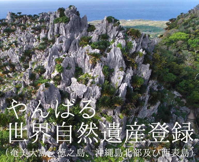 やんばる世界自然遺産登録(奄美大島、徳之島、沖縄島北部及び西表島)