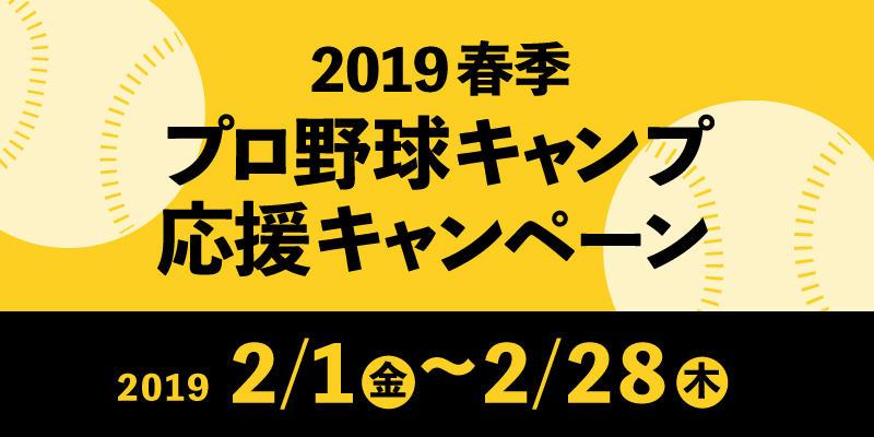 2019camp01.jpg