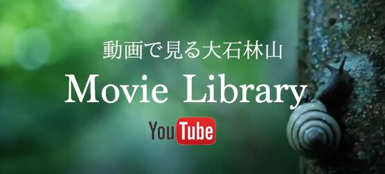 動画で見る大石林山