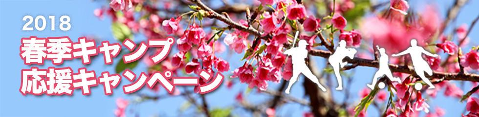 春季キャンプ応援キャンペーン